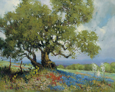Bluebonnets & Red Flowers Canvas Giclee by H. C. Zachry of a West Texas Pastorial Landscape Scene