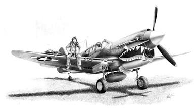 Curtis P-40 Warhawk by Mike Lynch