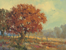 Morning Mist by H. C. Zachry