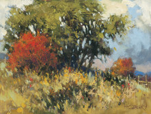 Touch of Fall by H. C. Zachry