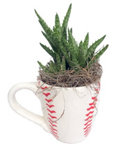 https://d3d71ba2asa5oz.cloudfront.net/12001418/images/baseballmugplanter.jpg?refresh
