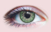 Aurora Jade Contact Lenses
