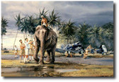 Puttalam Elephants