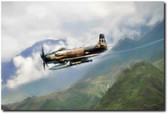 Skyraider Aviation Art
