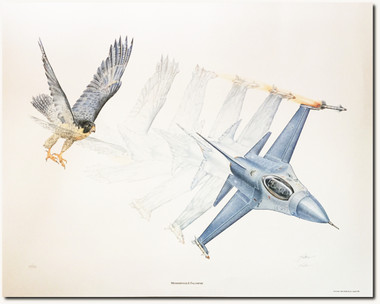 Metamorphosis II: Falconfyre by Jody Sjogren