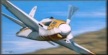 Bear is Back Aviation Art