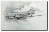 Gooney Bird Pencil Sketch