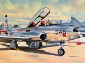 Star of the Show (Star-of-the-Show)  Aviation Art