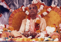 "Srila Prabhupada Photo, Golden Vyasasana, 8""x10"""