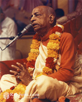 "Srila Prabhupada Photo, New Dwaraka, Giving Class, 5""x7"""