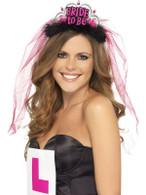 Bride To Be Tiara with Veil, Pink