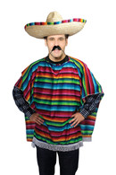 Mexican Poncho, Budget, Unisex Adult Fancy Dress Costume, One Size