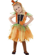 Pumpkin Fairy Costume, Halloween Child Fancy Dress, Small Age 4-6