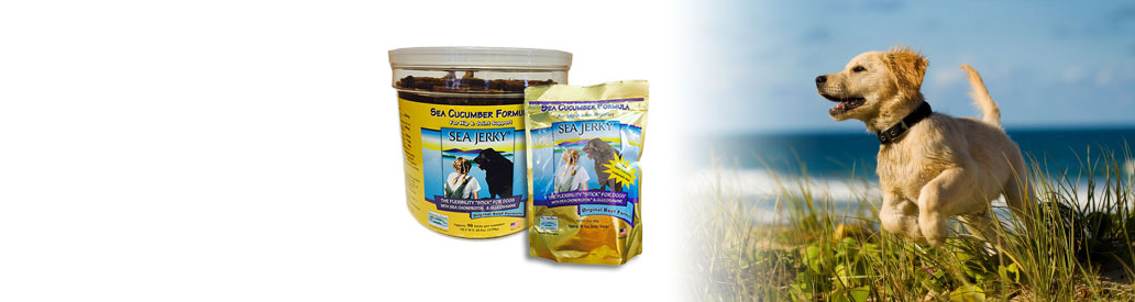 Sea Jerky: The original patented flexibility treat for dogs