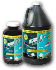 Microbe-Lift SA - Quart