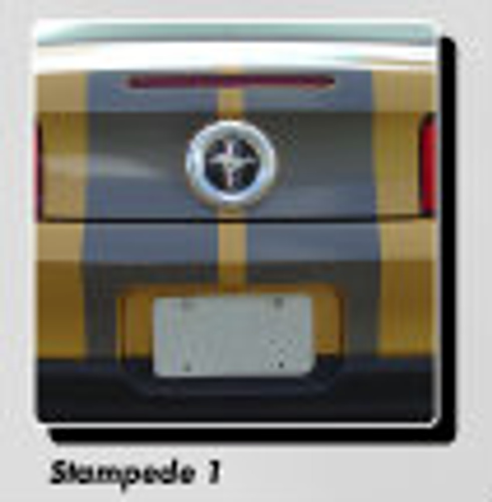 Stampede 1 Racing Stripes for 2010, 2011, 2012 Ford Mustang