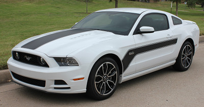 2013-2014 Mustang Flight Graphic Kit