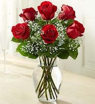 6 Red Roses Vased