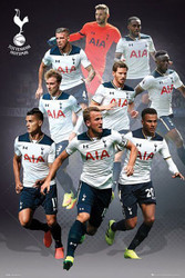 TOTTENHAM SPURS PLAYERS MONTAGE Official Poster 2016/17-#398