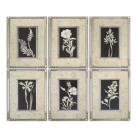 Glowing Florals Framed Art, S/6
