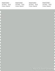 PANTONE SMART 14-4503X Color Swatch Card, Metal
