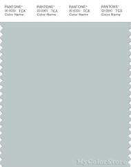 PANTONE SMART 14-4504X Color Swatch Card, Sky Gray