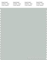 PANTONE SMART 14-4505X Color Swatch Card, Smoke