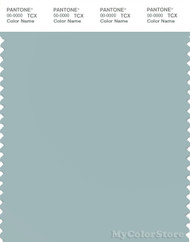 PANTONE SMART 14-4506X Color Swatch Card, Ether