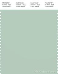 PANTONE SMART 14-6008X Color Swatch Card, Subtle Green