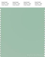 PANTONE SMART 14-6011X Color Swatch Card, Jade Gray