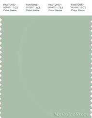 PANTONE SMART 14-6312X Color Swatch Card, Cameo Green