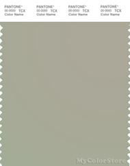 PANTONE SMART 14-6408X Color Swatch Card, Abbey Stone