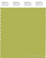 PANTONE SMART 15-0538X Color Swatch Card, Green Oasis