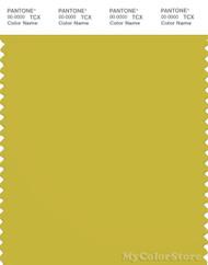 PANTONE SMART 15-0646X Color Swatch Card, Warm Olive