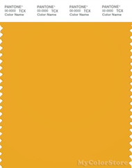 PANTONE SMART 15 0955X Color Swatch Card Old Gold