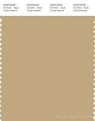 PANTONE SMART 15-1119X Color Swatch Card, Drab Gray