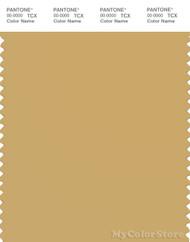 PANTONE SMART 15-1132X Color Swatch Card, Fall Leaf