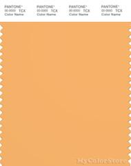 PANTONE SMART 15-1145X Color Swatch Card, Chamois