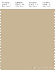 PANTONE SMART 15-1217X Color Swatch Card, Mojave Desert