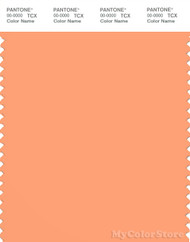 PANTONE SMART 15-1239X Color Swatch Card, Canteloupe