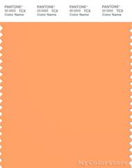 PANTONE SMART 15-1245X Color Swatch Card, Mock Orange