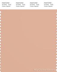 PANTONE SMART 15-1318X Color Swatch Card, 2pink Sand