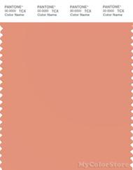 PANTONE SMART 15-1333X Color Swatch Card, Canyon Sunset