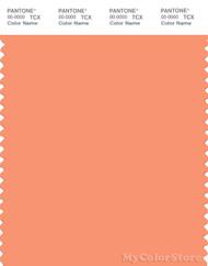 PANTONE SMART 15-1340X Color Swatch Card, Cadmium Orange