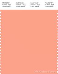PANTONE SMART 15-1433X Color Swatch Card, Papaya Punch