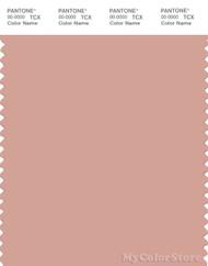 PANTONE SMART 15-1516X Color Swatch Card, Peachbeige