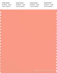 PANTONE SMART 15-1530X Color Swatch Card, Peach Pink