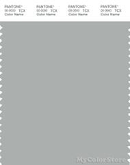 PANTONE SMART 15-4703X Color Swatch Card, Blue Gray