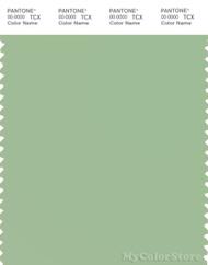 PANTONE SMART 15-6317X Color Swatch Card, Iris Green