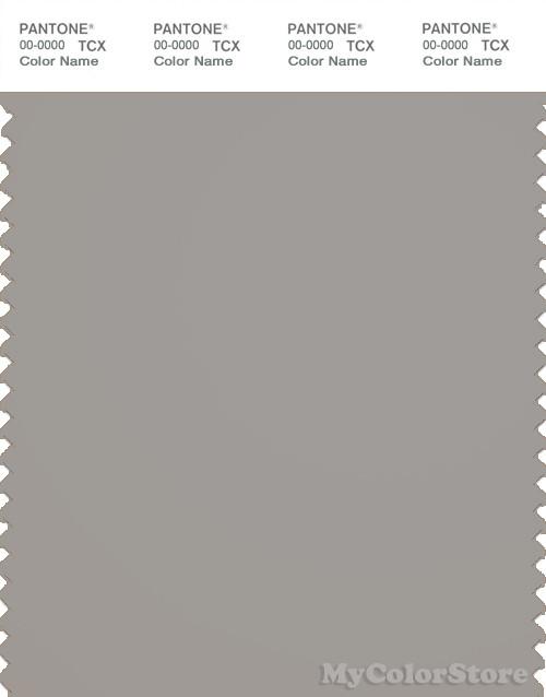 PANTONE SMART 16-0000X Color Swatch Card, Penguin